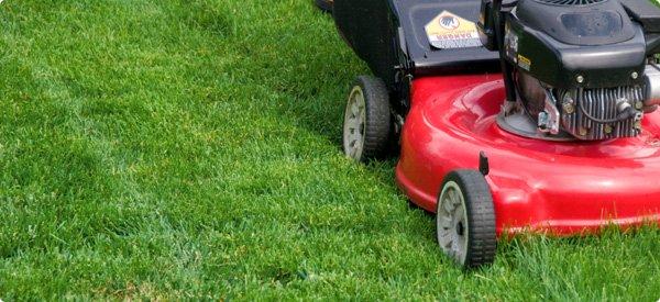 lawn-mowing_1_jpg_600x275_q85_crop